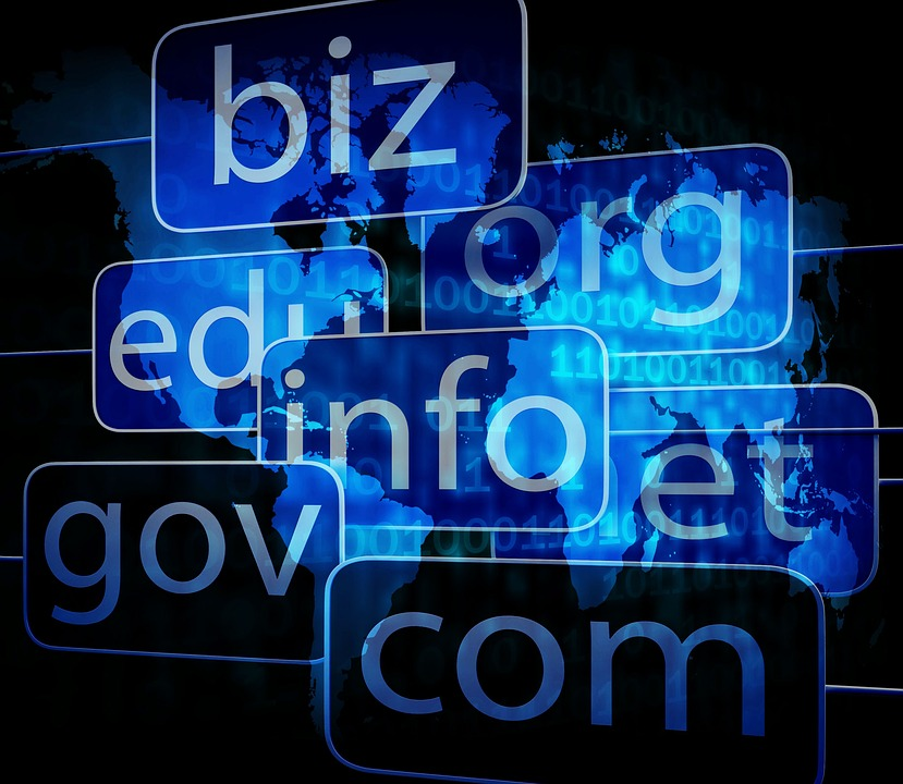 Domain names and their importance to your company or organization